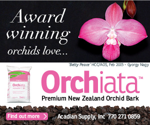 Orchiata - Premium New Zealand Orchid Bark