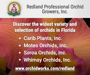 Redland Professional Orchid Growers