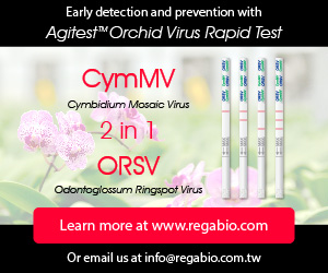 Agitest - Orchid Virus Rapid Test