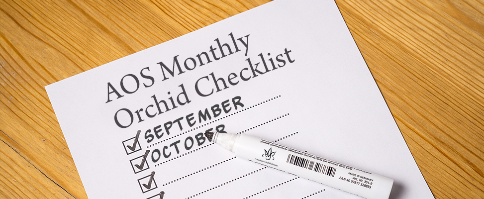 Monthly Checklist September And October